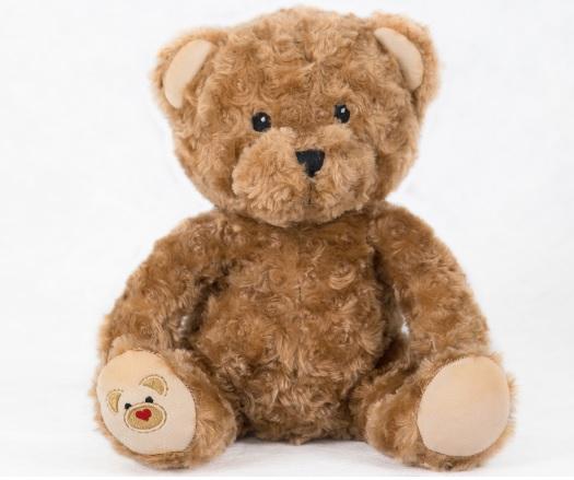 Plush heart recording bear